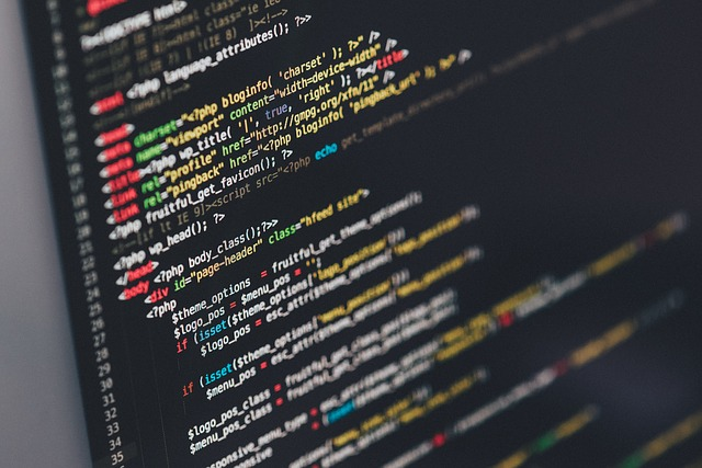 learn to code, high income skills online