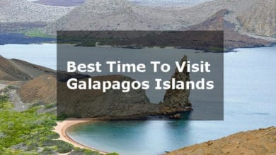 Photo of When is the best time to visit Galapagos? – Travelers Guide